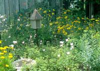 Create a Backyard Wildlife and Pollinator Habitat @ Oregon Farm Bureau | Salem | Oregon | United States