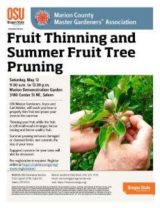 Fruit Thinning & Summer Fruit Tree Pruning @ Marion Demonstration Garden | Salem | Oregon | United States