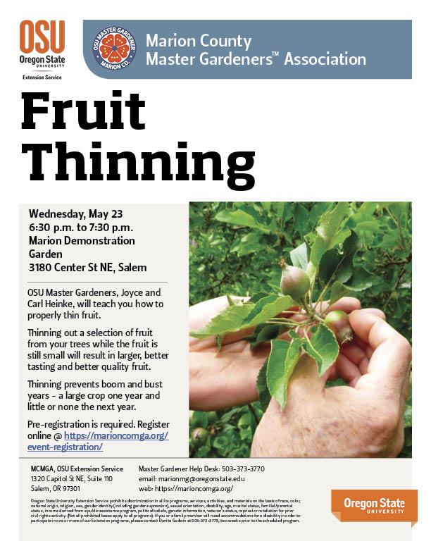 Fruit Thinning @ Marion Demonstration Garden | Salem | Oregon | United States
