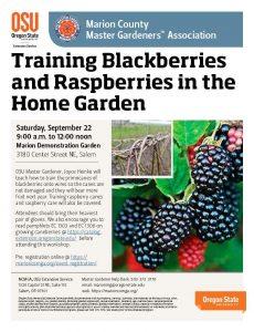 Training Caneberries in the Home Garden @ Marion Demonstration Garden | Salem | Oregon | United States